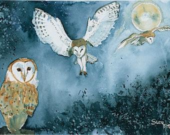 Night Owls Watercolour print
