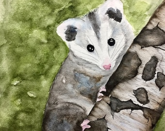 Possum Love, original watercolor of a baby opossum, 8x10 inches