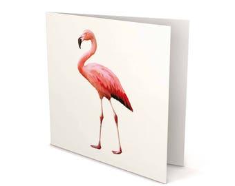 Flamingo Greeting Card, Flamingo card, Flamingo, Greeting Card, Square Card, Blank card