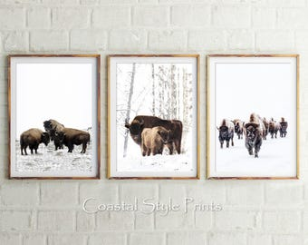 Bison Set Of 3 Prints, Bison Print, Digital Prints, Animal Wall Art, Buffalo Print, Buffalo Poster, American Bison Print, Neutral Wall Decor