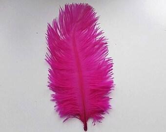 set of 5 fuchsia feathers