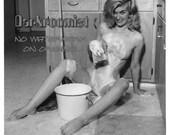 Vintage Soapy Clean Up Pi...