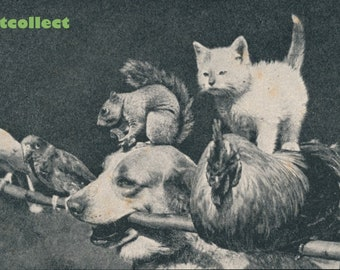 Vintage Children's Image (1950s): Dog Holding Animals On A Stick