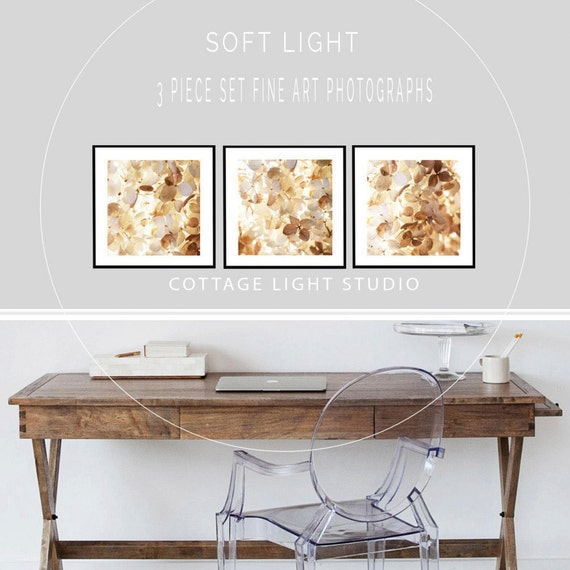 Pick 2 of 3, Photography Two Piece Set, Nature, Hydrangea, Naturals, Ivory, Two 8 or 12 inch prints, Home Decor, Wall Art