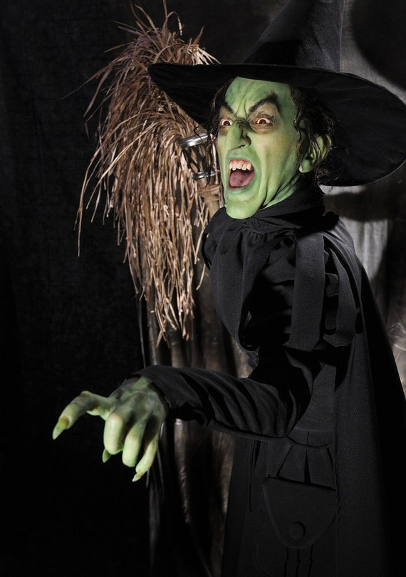 Wicked Witch of the West Custom CostumeWitch Of Life Outfit