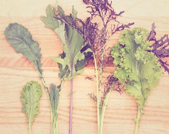 Food Photography - Kitchen Art - Lettuce Photograph - Dining Room Decor - Food - Fine Art Photography Print - Green Purple Kitchen Decor