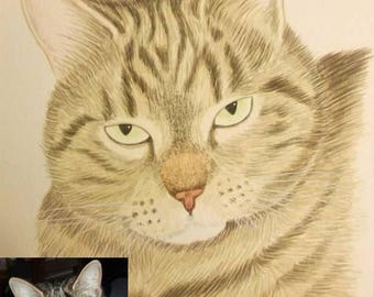 Custom portrait of your pet in watercolor - A4 size