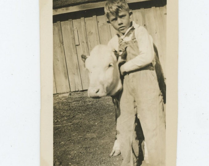 Vintage Snapshot Photo, c1930s: Boy with Calf [84663]