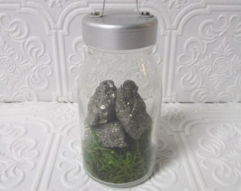 CURIOSITY JAR - Pyrite and Moss Gold Stones Rocks Specimen Display