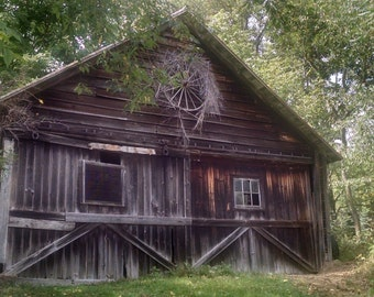 Old Barn in the Woods