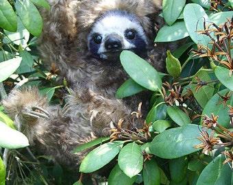 Faultier selber nähen by Furry Critters, ebook mit 63 Seiten und Schnittmuster