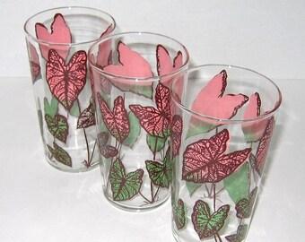 Vintage Caladium Pattern Drinking Glasses Tumblers / Vintage Floral Glasses In Pink, Green & Maroon - Three