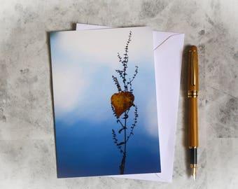 Heart shaped leaf   photo greeting card  birthday card  wedding card, anniversary card   photographic card   nature   leaf