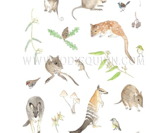 Southern Forests Nature Collection Print