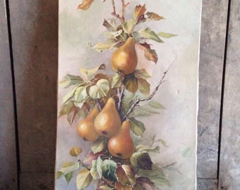 Oil painting, pears, signed Elise, 1900's, painting of fruit, decor,