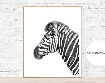 Zebra Print, Zebra Wall Art, Zebra Decor, Zebra Photography, Animal Print, Safari Print, Safari Photography, Black and White, Zebra Poster
