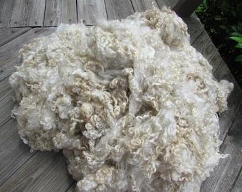 Wensleydale Locks Natural ivory wool fleece - 2 oz