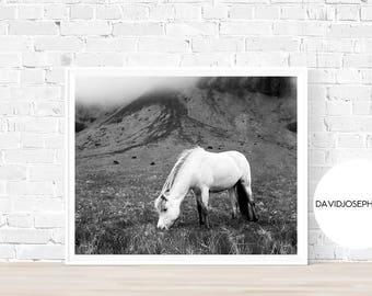 Horse Print, White Horse Print, Horse Photography, Fog Animal Print, Animal Print, Horse Wall Art, Digital Download, Black and White