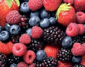 Mixed Berry Seeds, Organic, Fresh,Value Pack, Perennial Plants, Strawberry, Blueberry, Blackberry, and Rasberry
