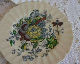 The Kirkwood Royal Doulton China Set 4 Saucers Butterfly Botanical Print D5130
