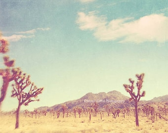 large wall art, Joshua Tree, poster, desert, retro blue, yellow, landscape photography, travel photo, southwest decor, California 36x36