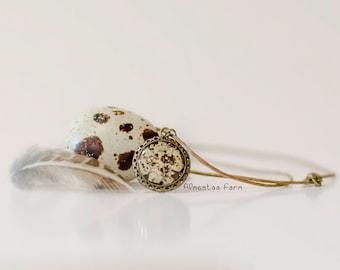 Quail Eggshell Necklace #01
