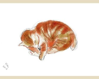 Cat Greeting Card, Blank, Nutmeg Sleeping Design No A6004