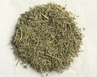 Horsetail (Equisetum arvense) - Organic