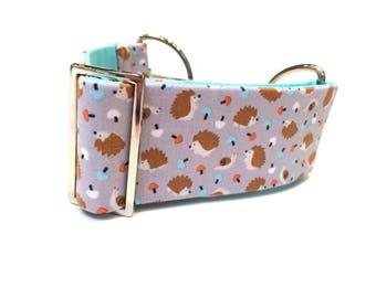 Martingale collar, Greyhound collar, sighthound collar, walking collar, lurcher collar, borzoi collar, dog collar