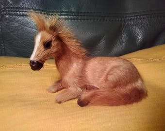 Natural Hair Lying Pony Horse