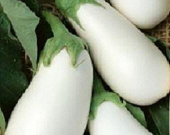 50 Eggplant White Star Hybrid Eggplant Seeds Egg plant seed