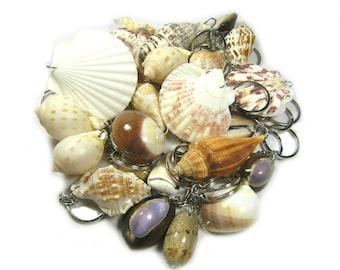 15 of Key Chain Natural Sea Shell Souvenir Pack/ Birthday Gift