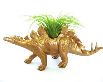 Gold Stegosaurus Dinosaur Planter with Air Plant // for her // for him // coworker gift // office plant