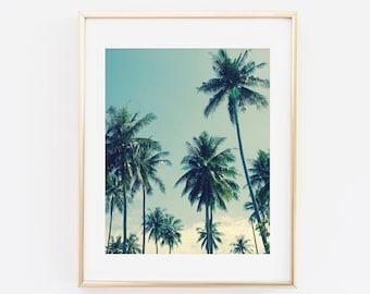 Palm Tree Print, Palm Trees Photography, Tropical Modern Wall Art, Tropical Decor, Palms, Palm Tree Photography Print, Palm Tree Printable