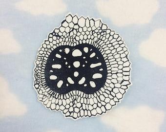 Diatom Sticker
