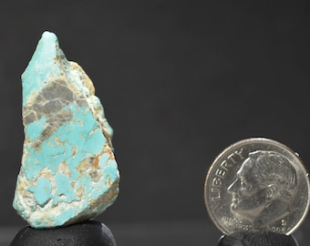 Turquoise gem rough  Pilot Mountain mine Nevada