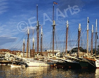 Camden Maine Windjammers Panoramic Photography Maine Color Art Print US MADE Maine Photographer