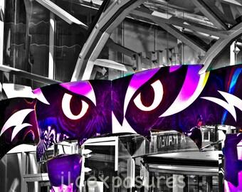 Raven Eyes   10x13 matted on a black mat