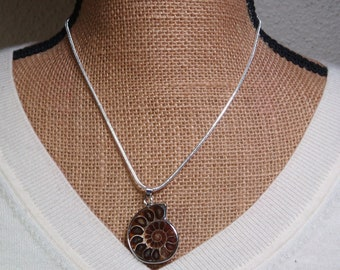 Natural Ammonite Fossil .925 Silver Necklace