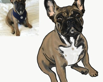 Custom Pet Portrait Prints