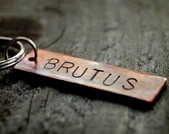 Pet Tag--Brutus, Custom  Copper ID