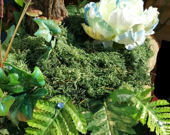 Enchanted Evergreen- Fairy Habitat