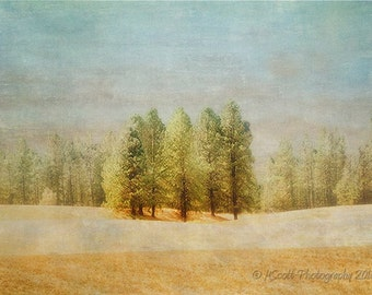 Trees Photograph | Pacific Northwest Landscape | Eastern Washington Art | Dreamy Photography | Pastel Nature Print  Home & Office Wall Decor