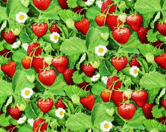 Berry Good Strawberry Green Elizabeth Studio 507 Cotton Fabric FQ 1/2 Full Metre