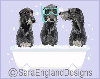 Spa Day - Scottish Deerhound