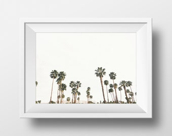 Palm Tree Print California Photography Palm Springs Art Print Nature Print Palm Springs Photograph Minimalistic Summer Decor Wall Decor