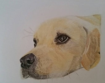 Labrador Portrait, Pet Picture, Dog Art, Christmas Gift, Picture This Cutie, Made To Order, Prints, Mothers Day Gift, Custom Dog Art, Dogs