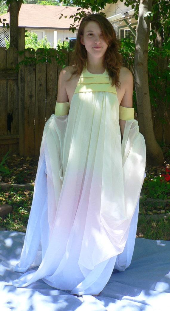 Padme Lake Gown Costume Cosplay Star Wars Episode II