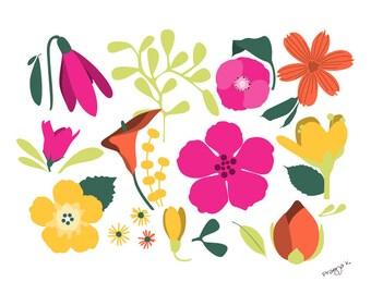 Flower art print -Mediterranean Breeze -Floral Illustration,Flower Wall Decor,flower illustration,Floral Home Decor,Colorful Print Wall Art