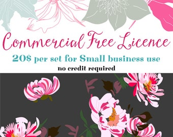 Commercial Free licence Royalty Free No credit Extended licence Commercial licence None credit Unlimited licence